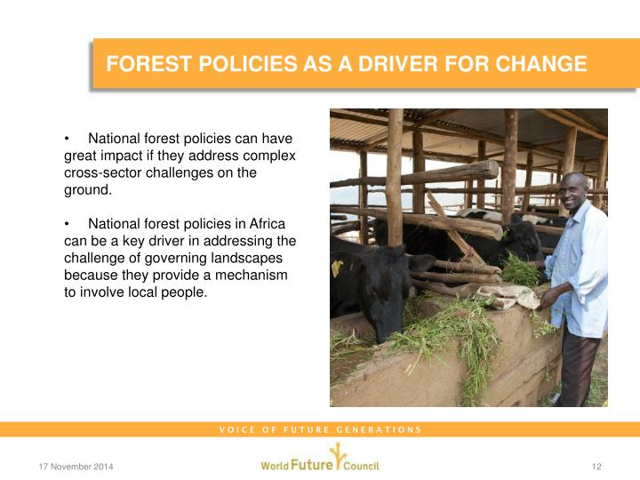 FOREST POLICIES AS A DRIVER FOR CHANGE