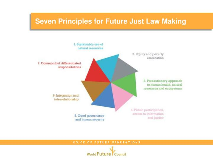 Seven Principles for Future Just Law Making