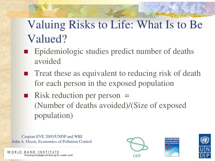 Valuing Risks to Life: What Is to Be Valued?