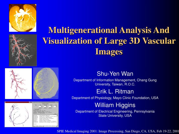 multigenerational analysis and visualization of large 3d vascular images n.
