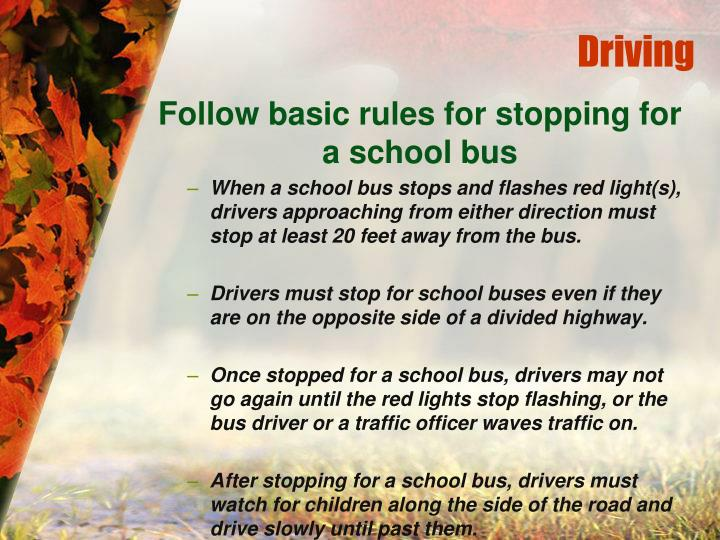 Follow basic rules for stopping for a school bus