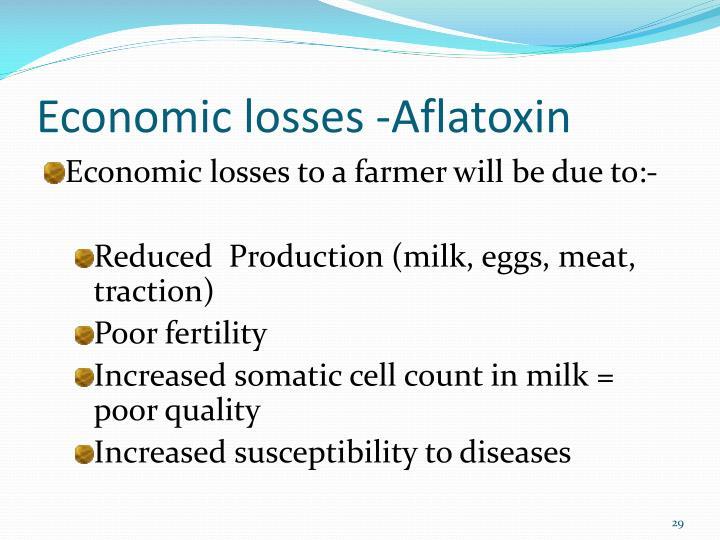 Economic losses -Aflatoxin