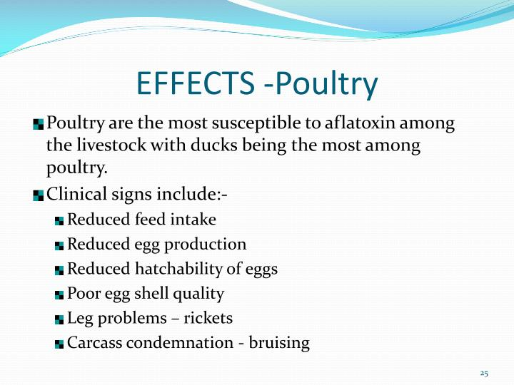 EFFECTS -Poultry