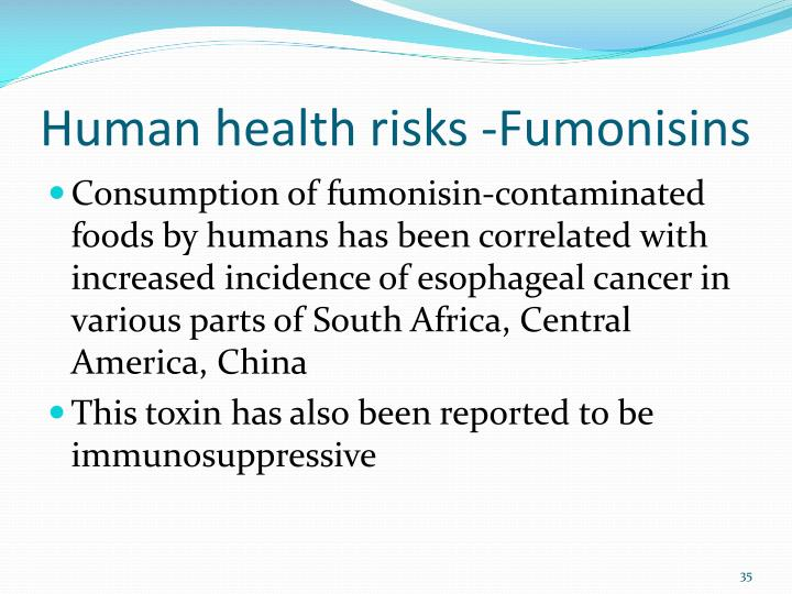 Human health risks -Fumonisins