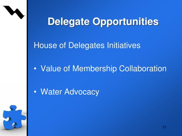 Delegate Opportunities