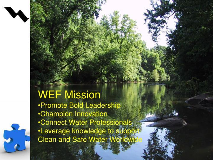 WEF Mission
