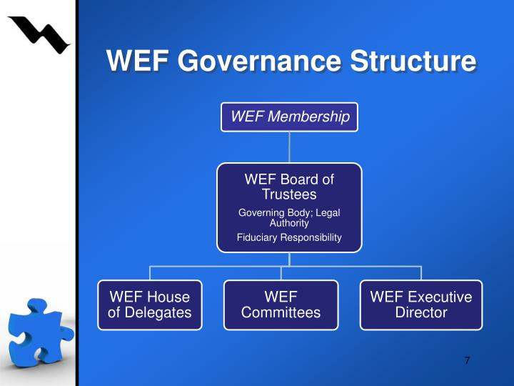 WEF Governance Structure