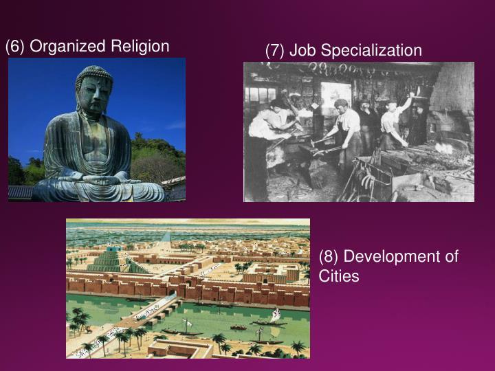 (6) Organized Religion