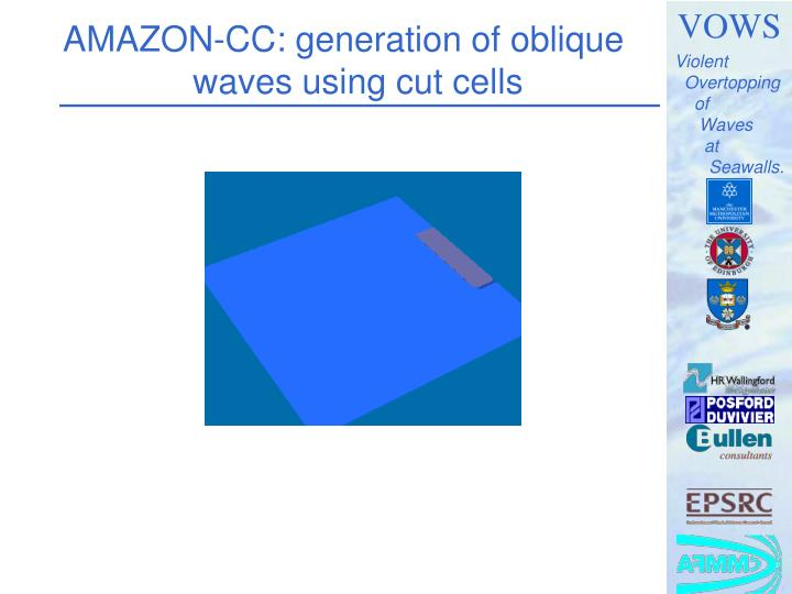 AMAZON-CC: generation of oblique waves using cut cells