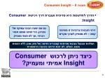 ii consumer insight