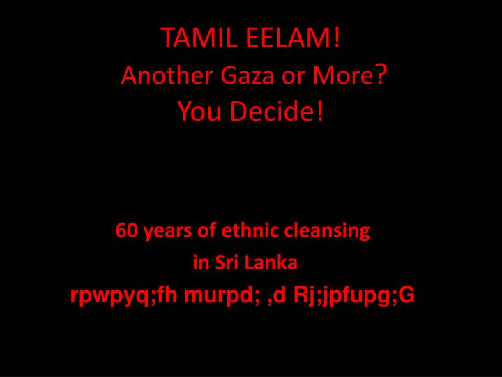 tamil eelam another gaza or more you decide n.