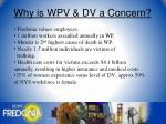 why is wpv dv a concern