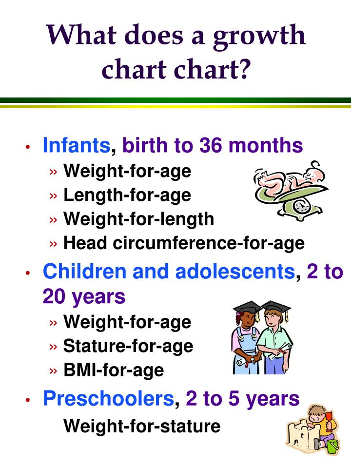 What does a growth chart chart?
