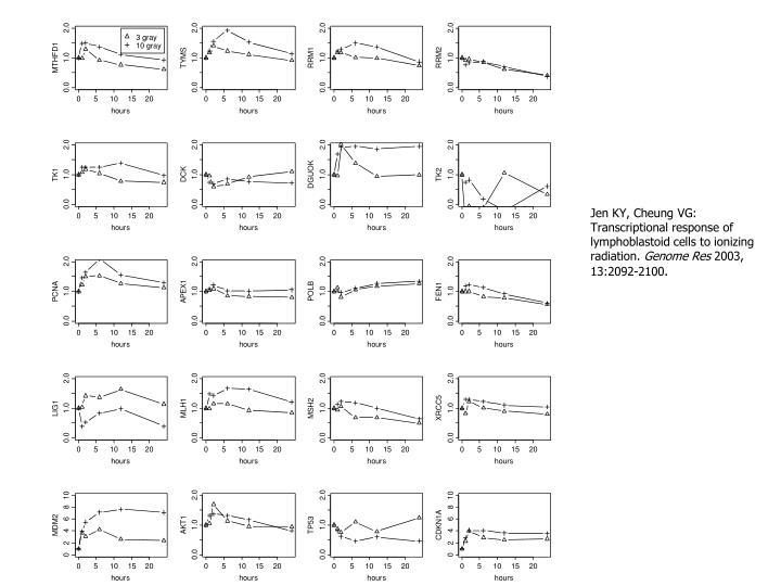 Jen KY, Cheung VG: Transcriptional response of lymphoblastoid cells to ionizing radiation.