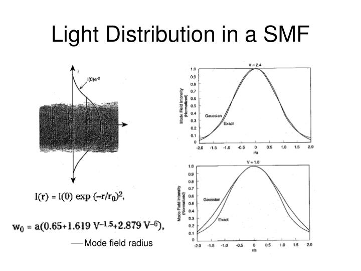 Light Distribution in a SMF