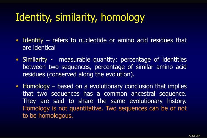 Identity, similarity, homology