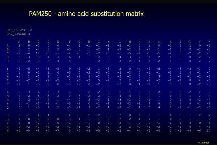 PAM250 - amino acid substitution matrix