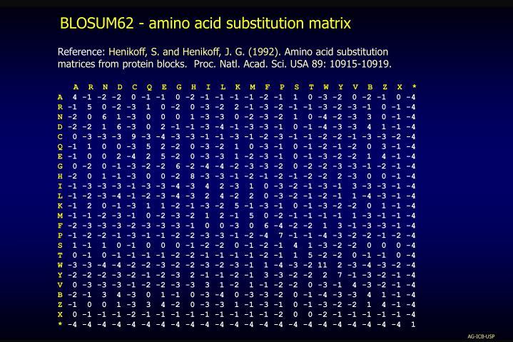 BLOSUM62 - amino acid substitution matrix