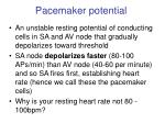pacemaker potential