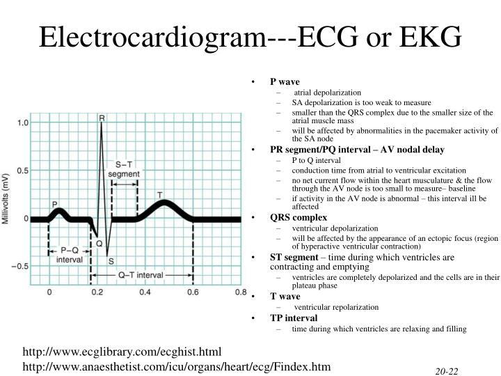 Electrocardiogram---ECG or EKG