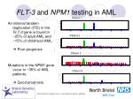 flt 3 and npm1 testing in aml