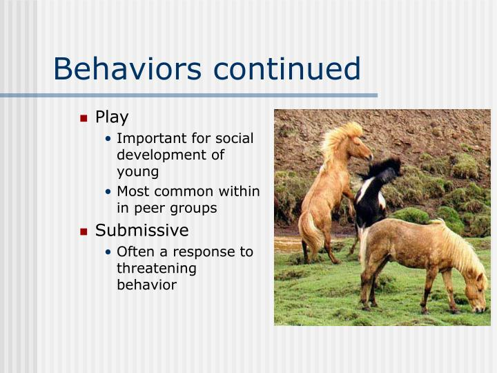 Behaviors continued