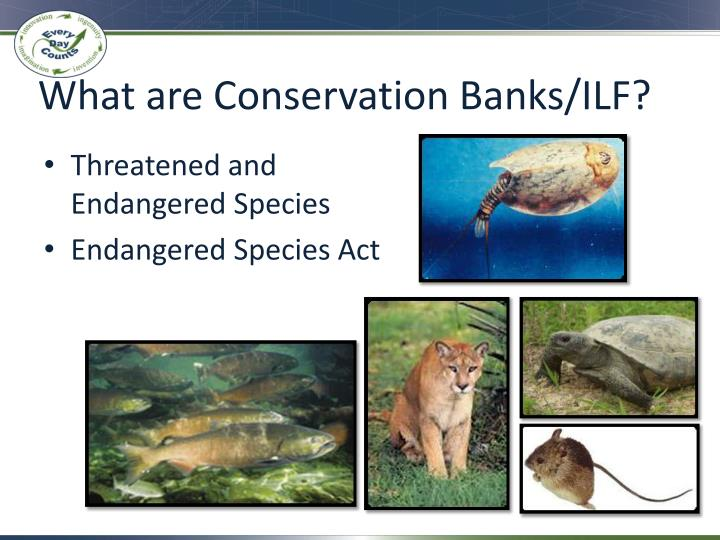 What are Conservation Banks/ILF?