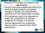 adjusting pps targets for programmatic adjustments