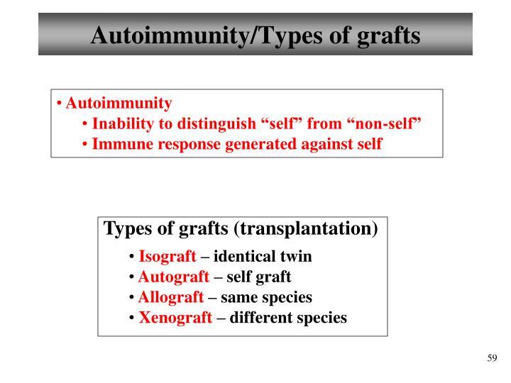 Autoimmunity/Types of grafts