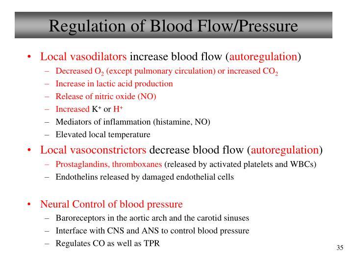 Regulation of Blood Flow/Pressure