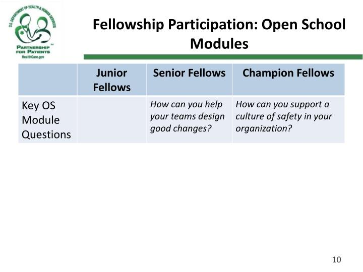 Fellowship Participation: Open School Modules