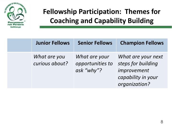 Fellowship Participation:  Themes for Coaching and Capability Building