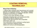 coating removal technology2