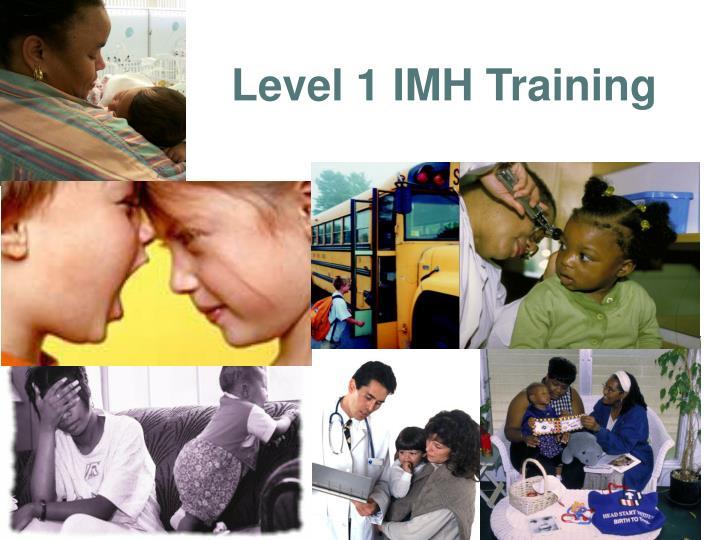 Level 1 IMH Training
