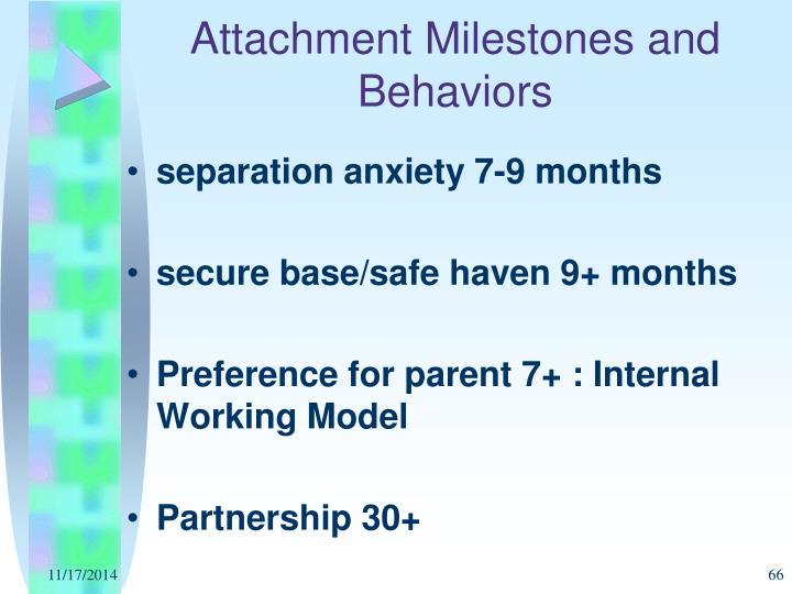 Attachment Milestones and Behaviors
