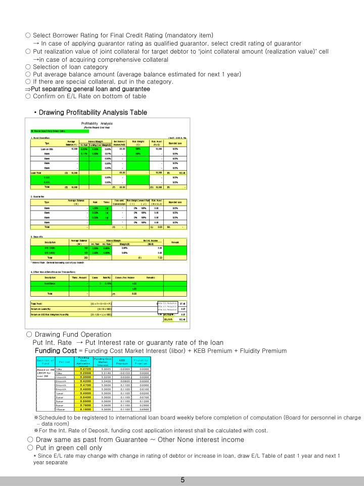 ○ Select Borrower Rating for Final Credit Rating (mandatory item)