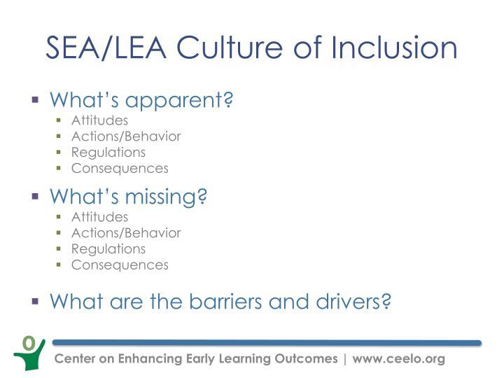 SEA/LEA Culture of Inclusion