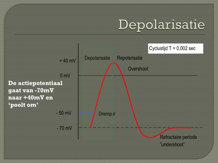 Depolarisatie
