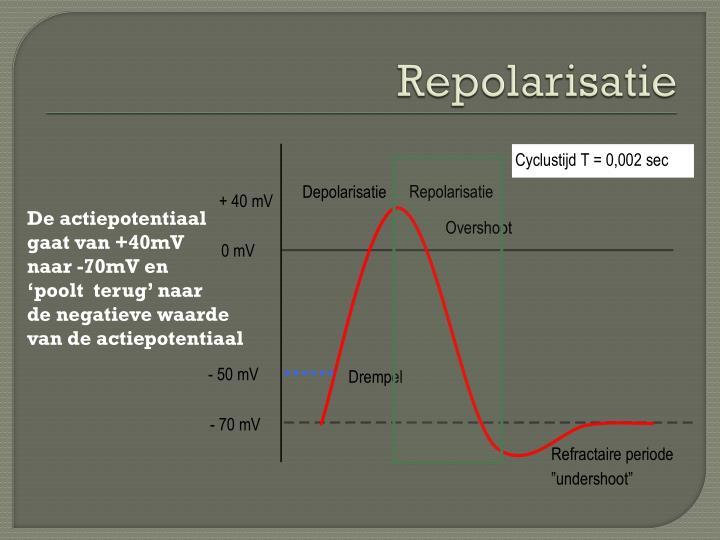 Repolarisatie