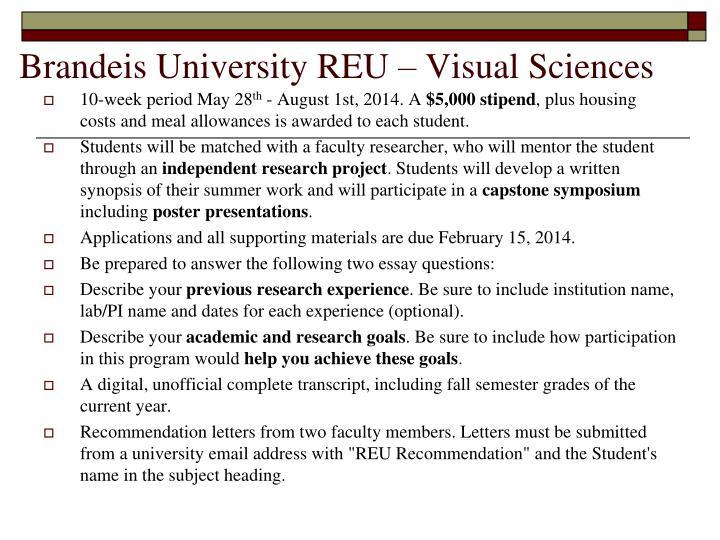 Brandeis University REU – Visual Sciences