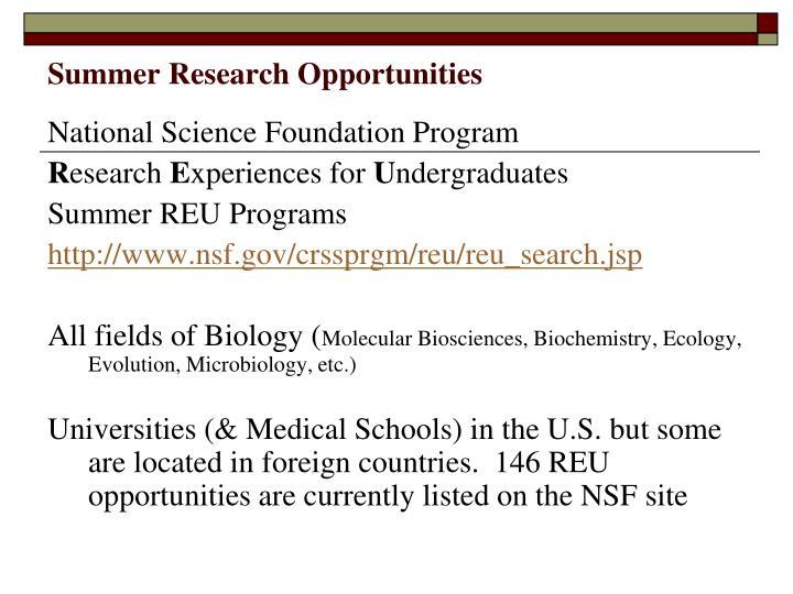 Summer research opportunities