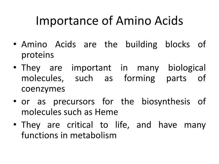 Importance of Amino Acids