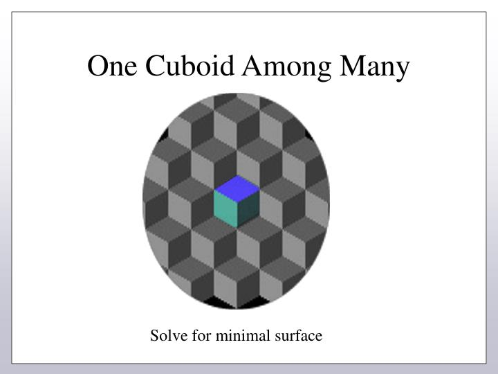 One Cuboid Among Many