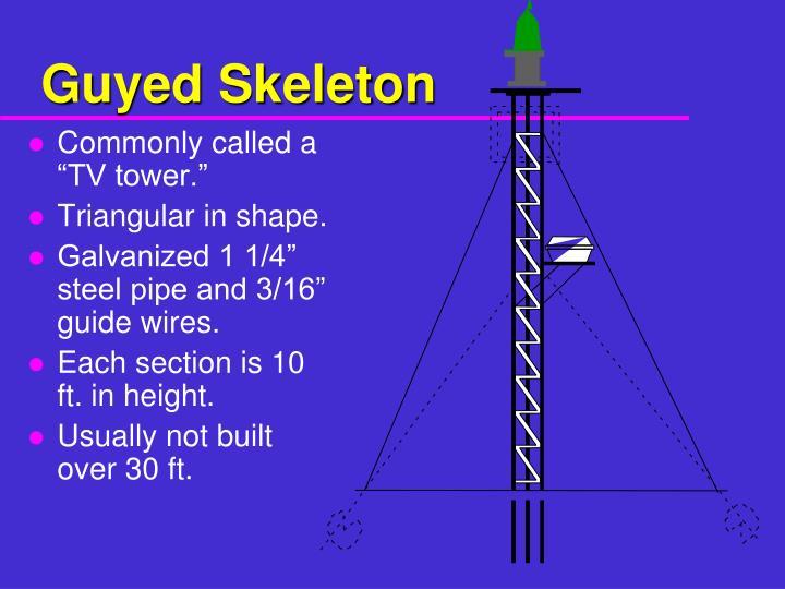 Guyed Skeleton