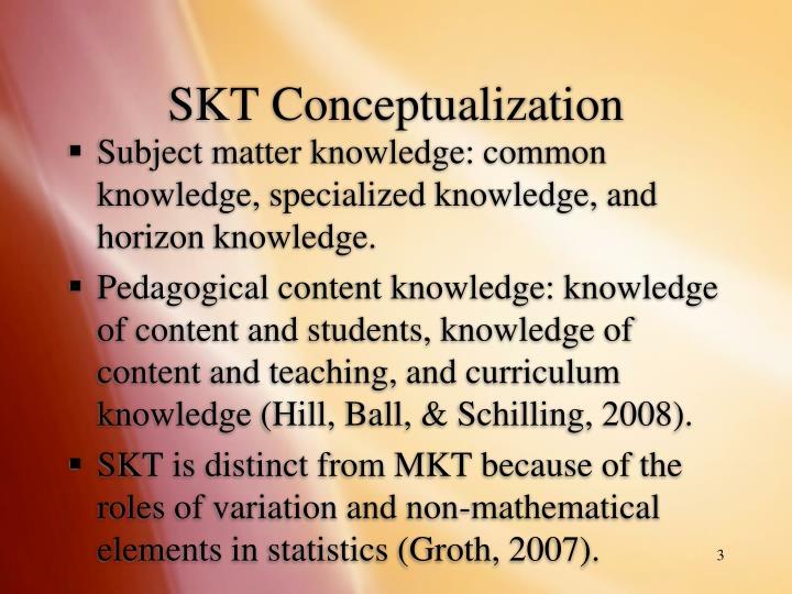 Skt conceptualization