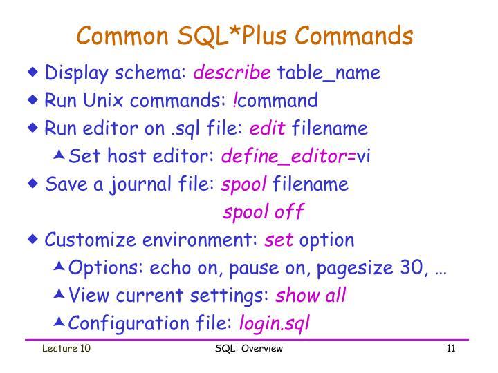 Common SQL*Plus Commands