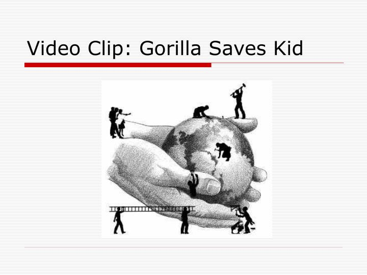 Video clip gorilla saves kid