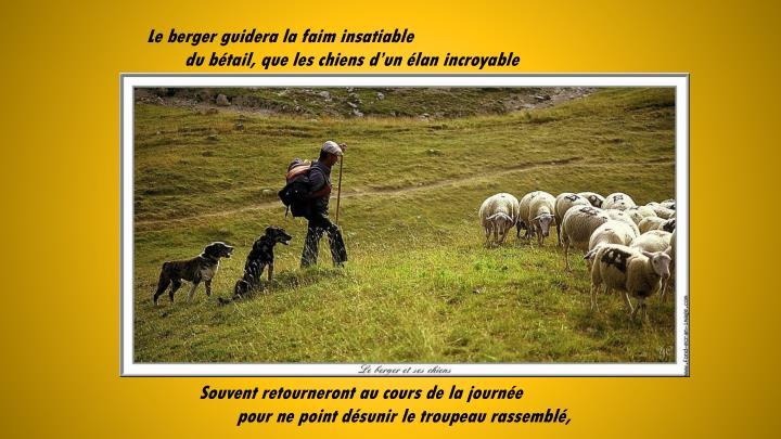 Le berger guidera la faim insatiable