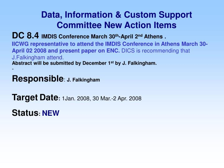 Data, Information & Custom Support Committee New Action Items