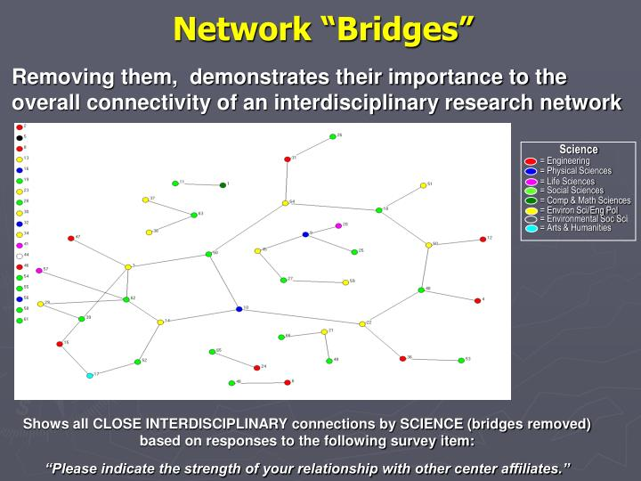"Network ""Bridges"""
